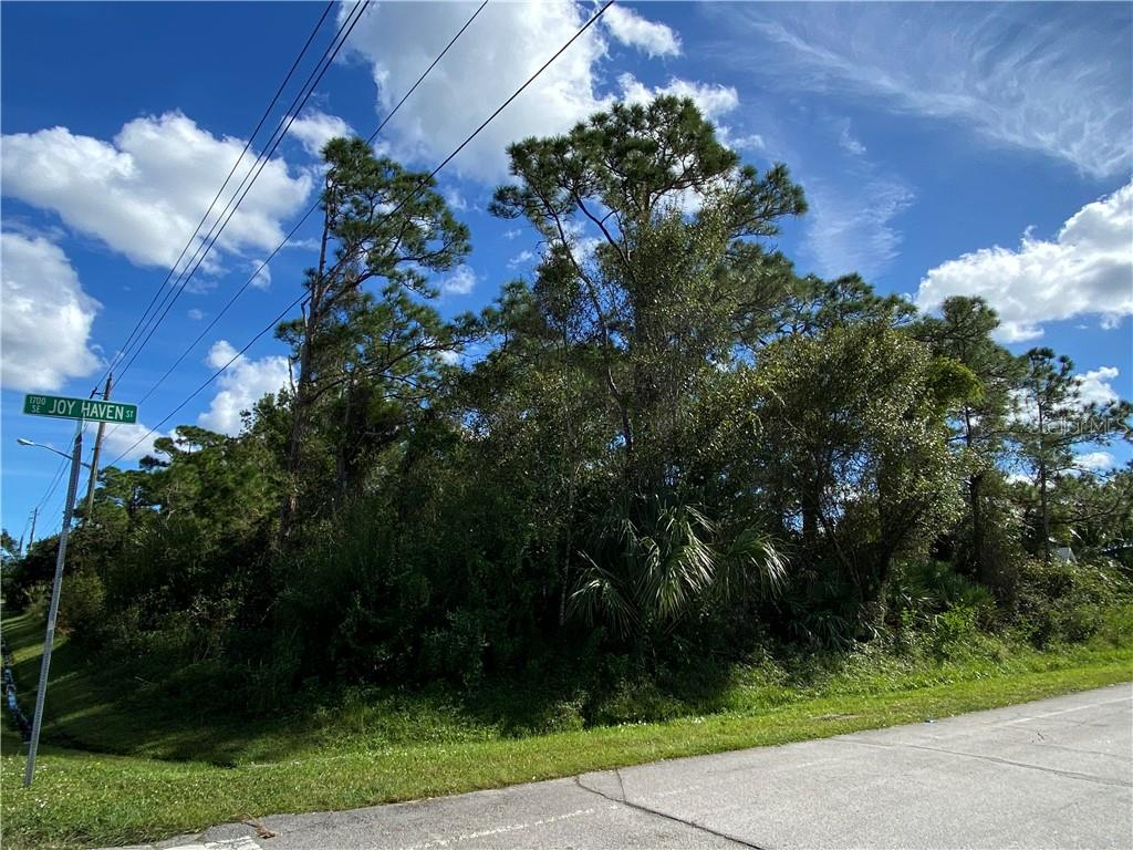 650 SE THORNHILL DRIVE Property Photo - PORT ST LUCIE, FL real estate listing
