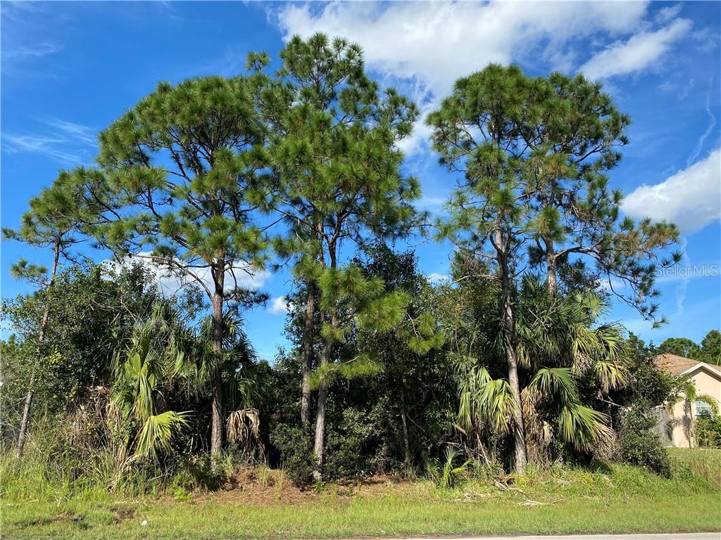 1573 SW BIRKEY AVENUE Property Photo - PORT ST LUCIE, FL real estate listing