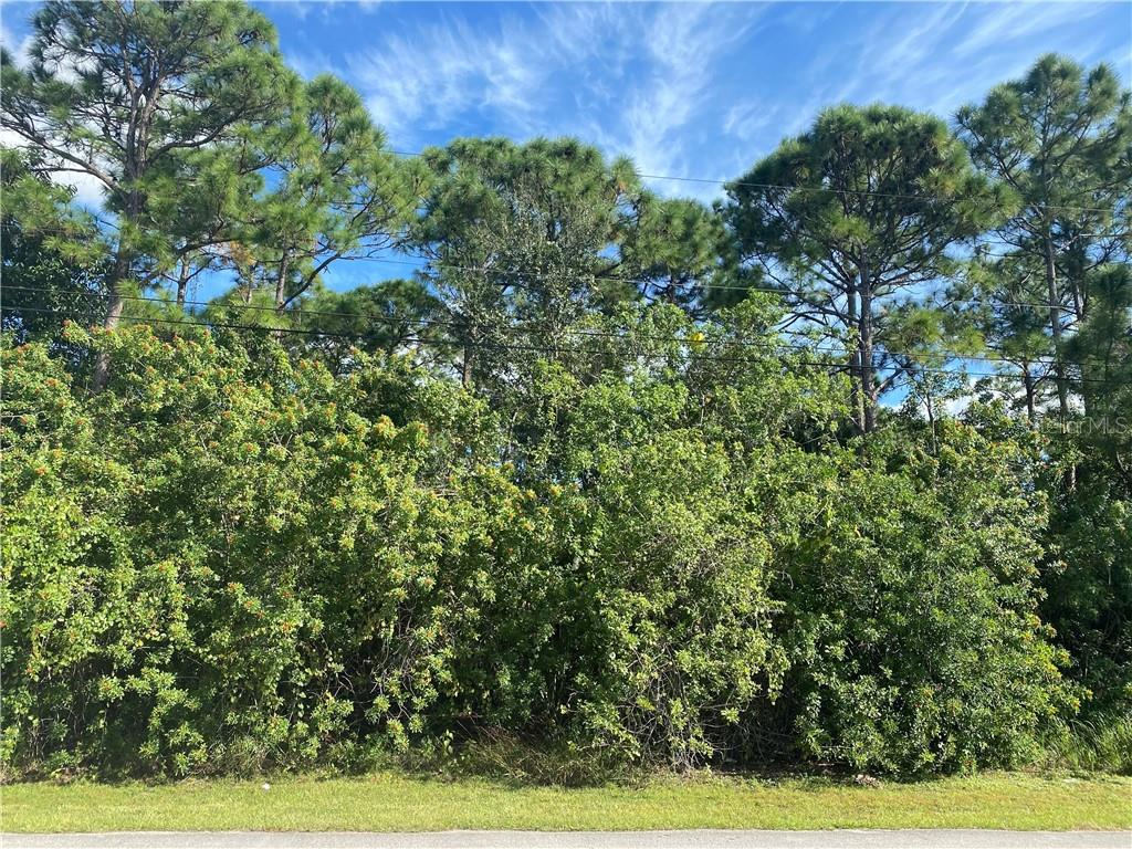 4062 SW BAMBERG STREET Property Photo - PORT SAINT LUCIE, FL real estate listing