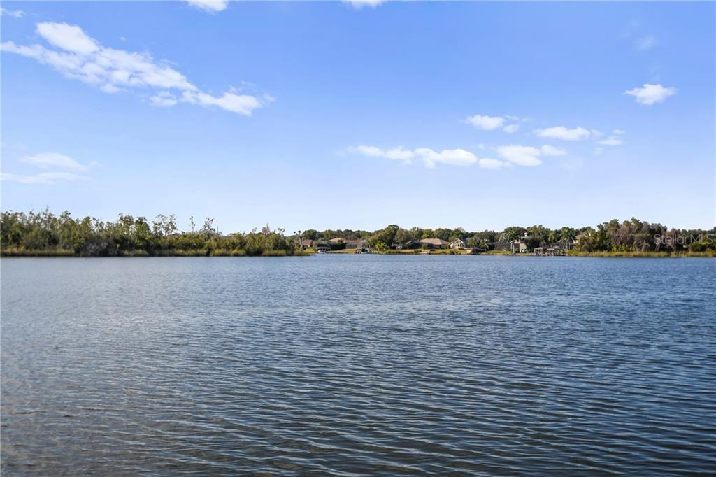 13036 Lake Roper Court Property Photo