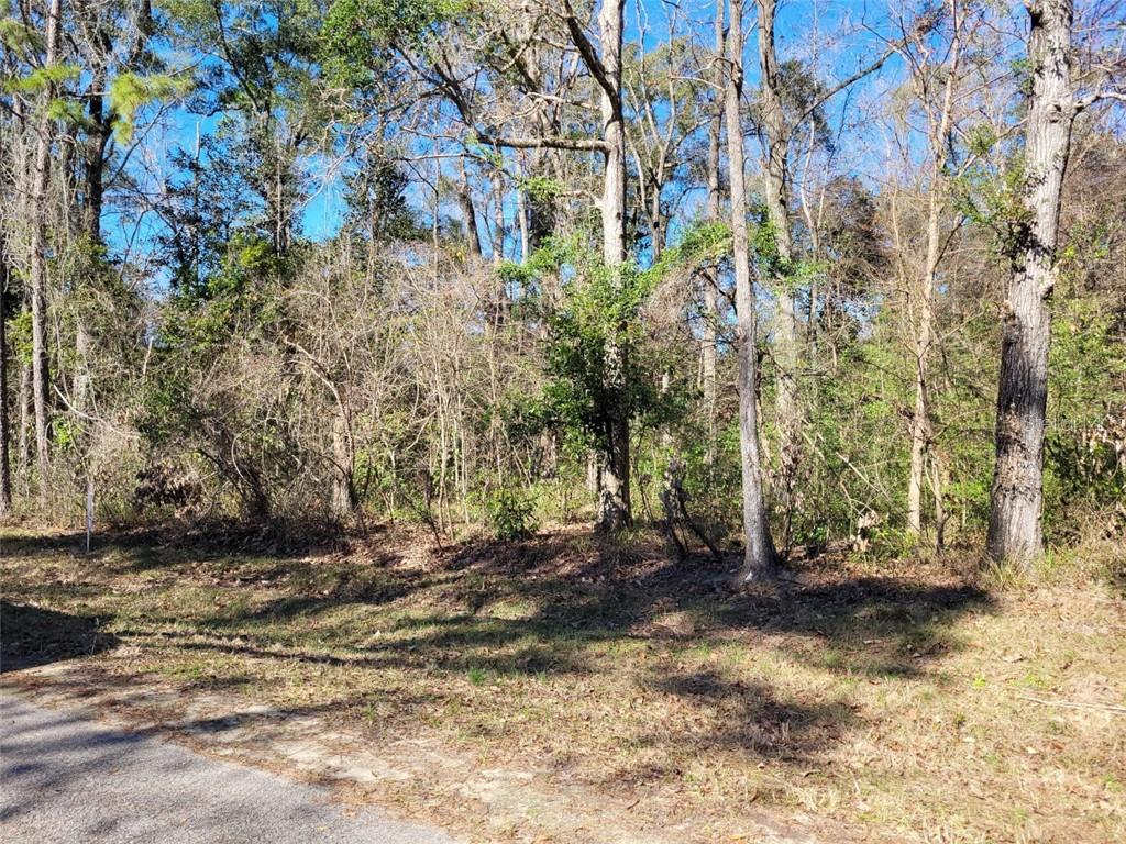 Lot 41 NW 129TH ST Property Photo - CHIEFLAND, FL real estate listing