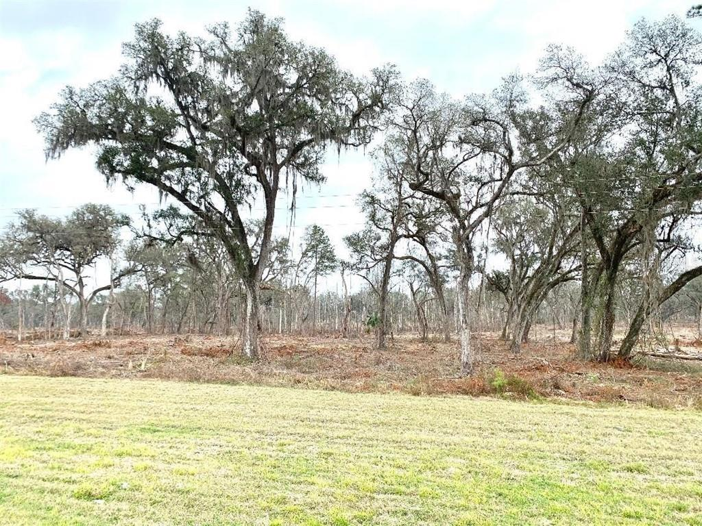 0 S & W OF HIGHWAY 27 Property Photo - OCALA, FL real estate listing