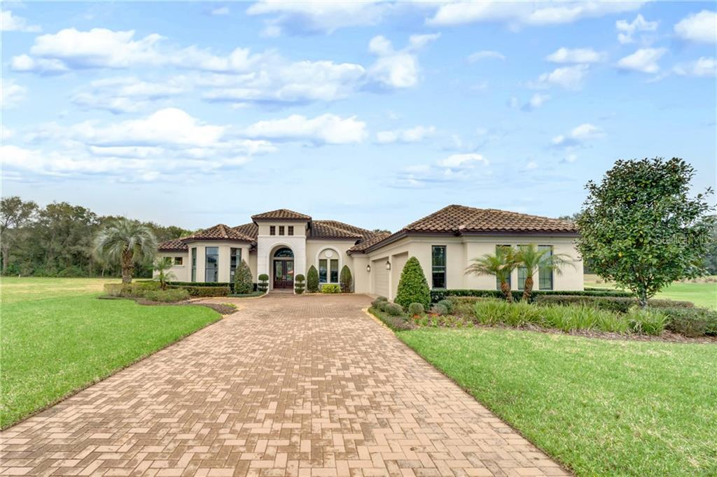 31808 HALFWAY COURT Property Photo - SORRENTO, FL real estate listing