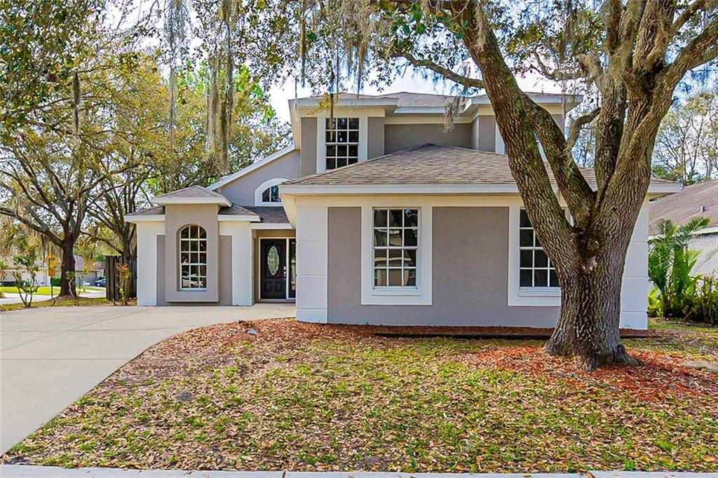 28546 MEADOWRUSH WAY Property Photo - WESLEY CHAPEL, FL real estate listing