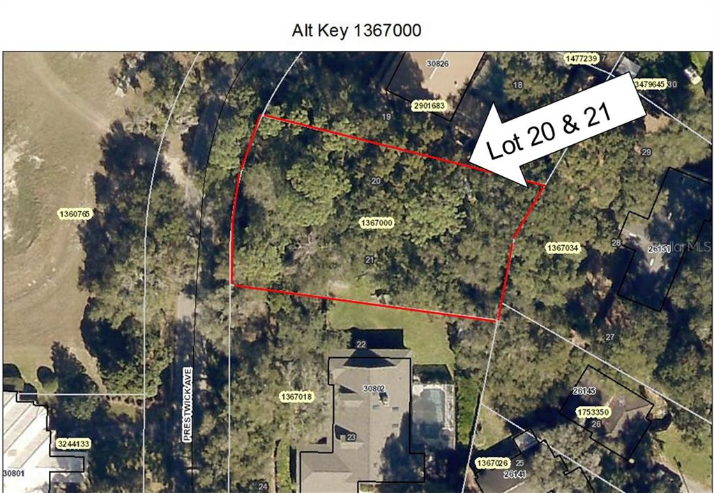 Lot 20/21 PRESTWICK AVENUE Property Photo - MOUNT PLYMOUTH, FL real estate listing