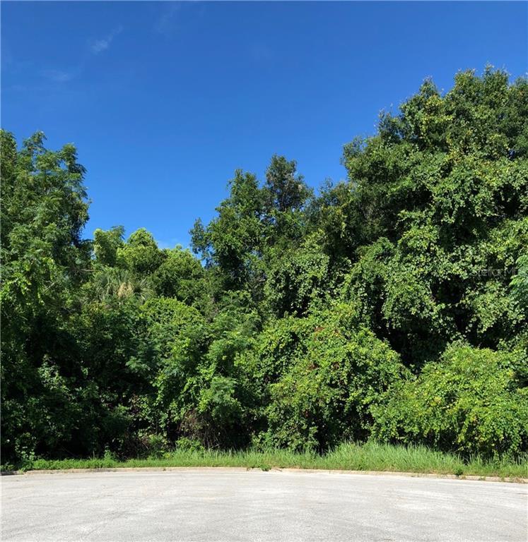 6625 Sinisi Drive Property Photo