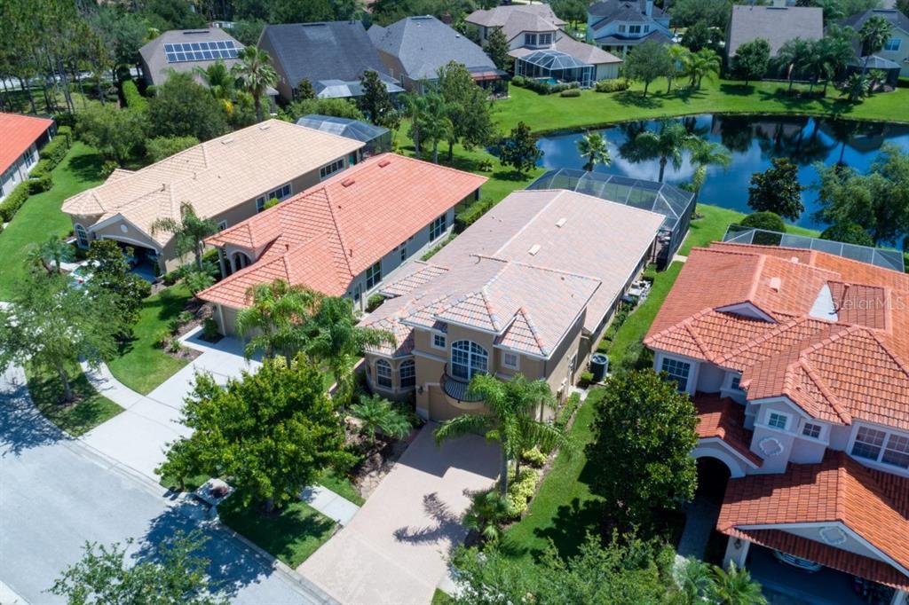 14520 MIRASOL MANOR COURT Property Photo - TAMPA, FL real estate listing