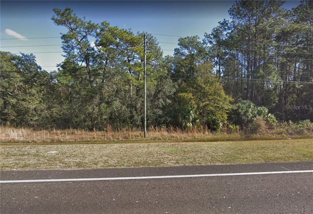 9269 S SUNCOAST BOULEVARD Property Photo - HOMOSASSA, FL real estate listing