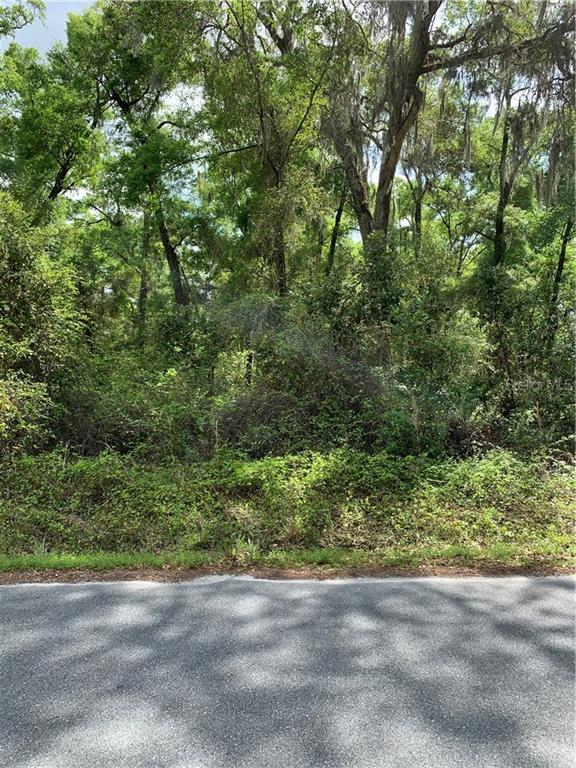 286 NE 596 AVENUE Property Photo - OLD TOWN, FL real estate listing