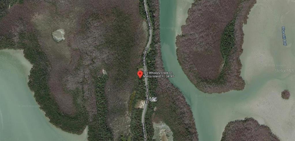 773 WHISKEY CREEK Property Photo - MARCO ISLAND, FL real estate listing