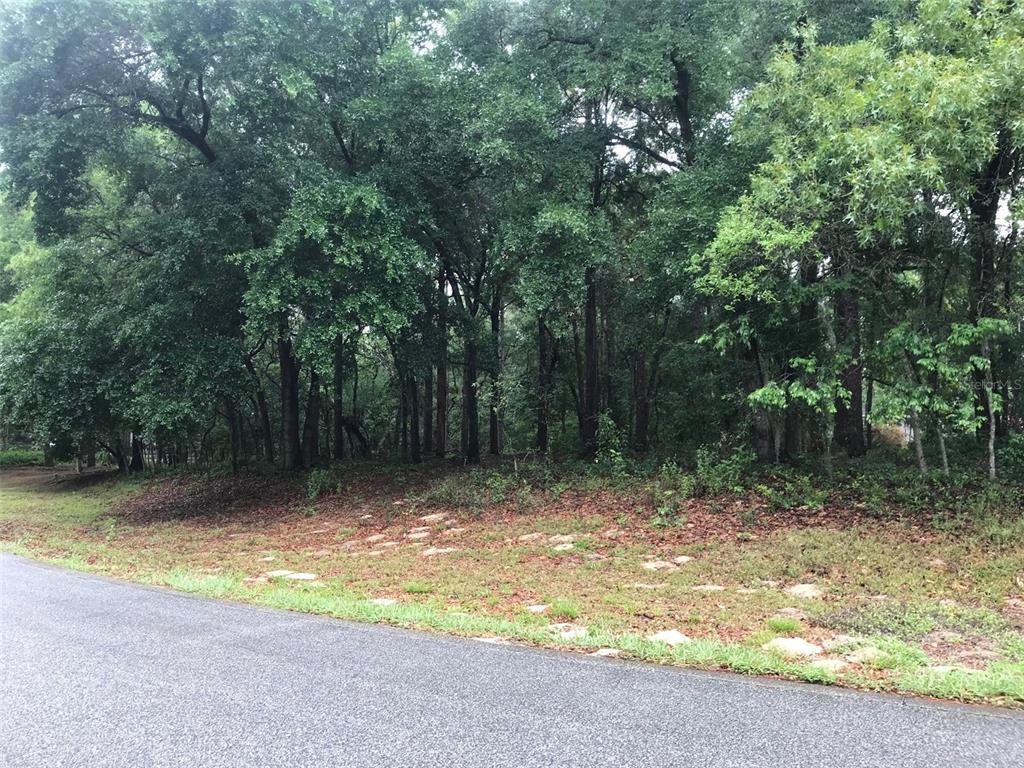 133 Piney Woods Road Property Photo