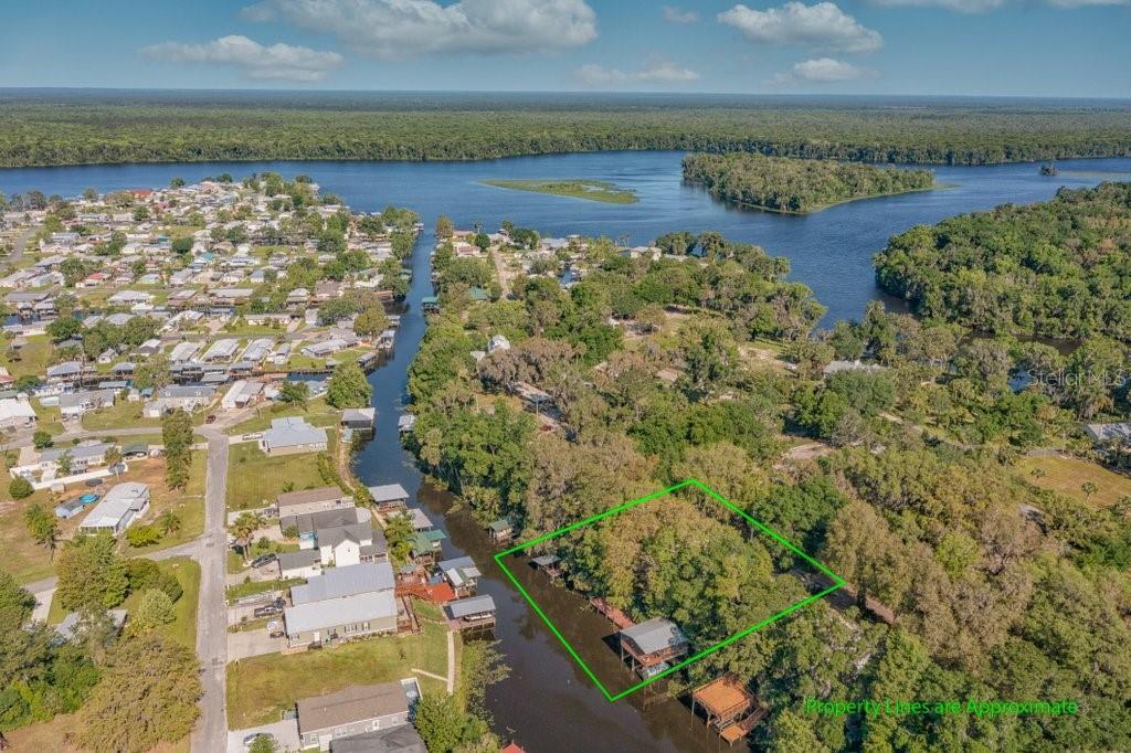 111 EASEMENT LANE Property Photo - WELAKA, FL real estate listing