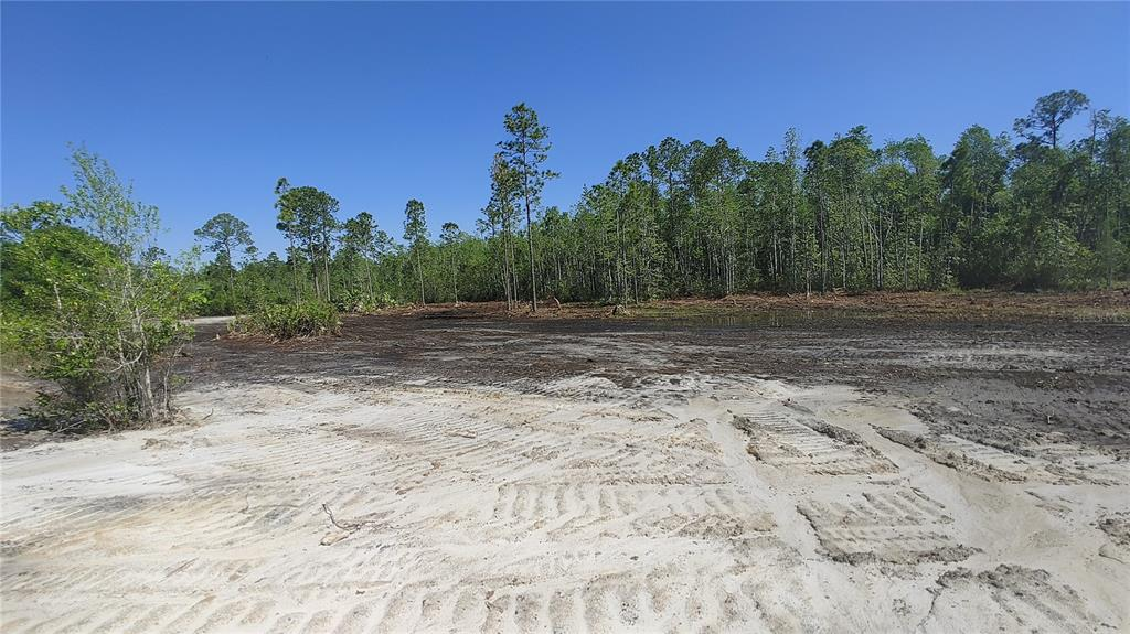 Lot 12 Omega Ranch Road Property Photo