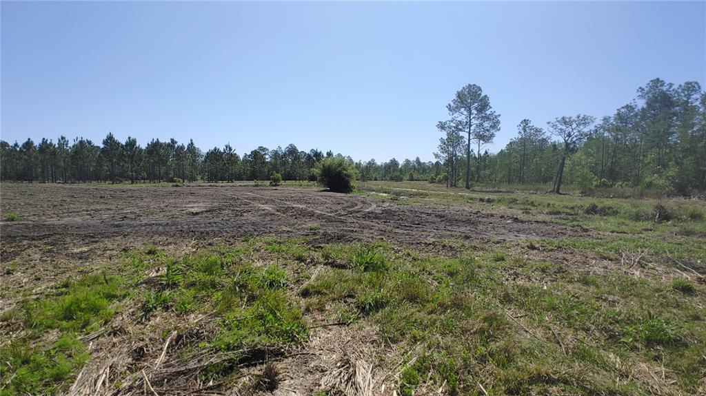Lot 13 Omega Ranch Road Property Photo