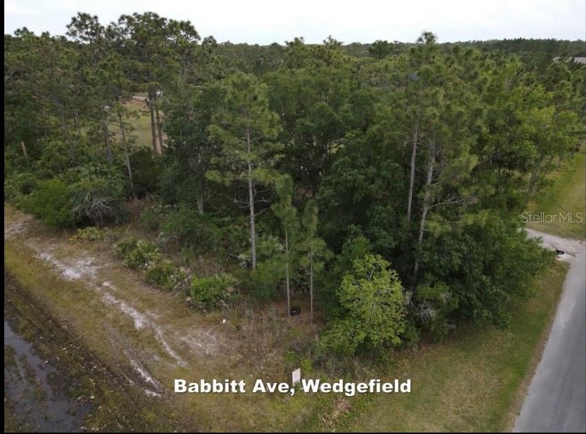 Babbitt Avenue Property Photo