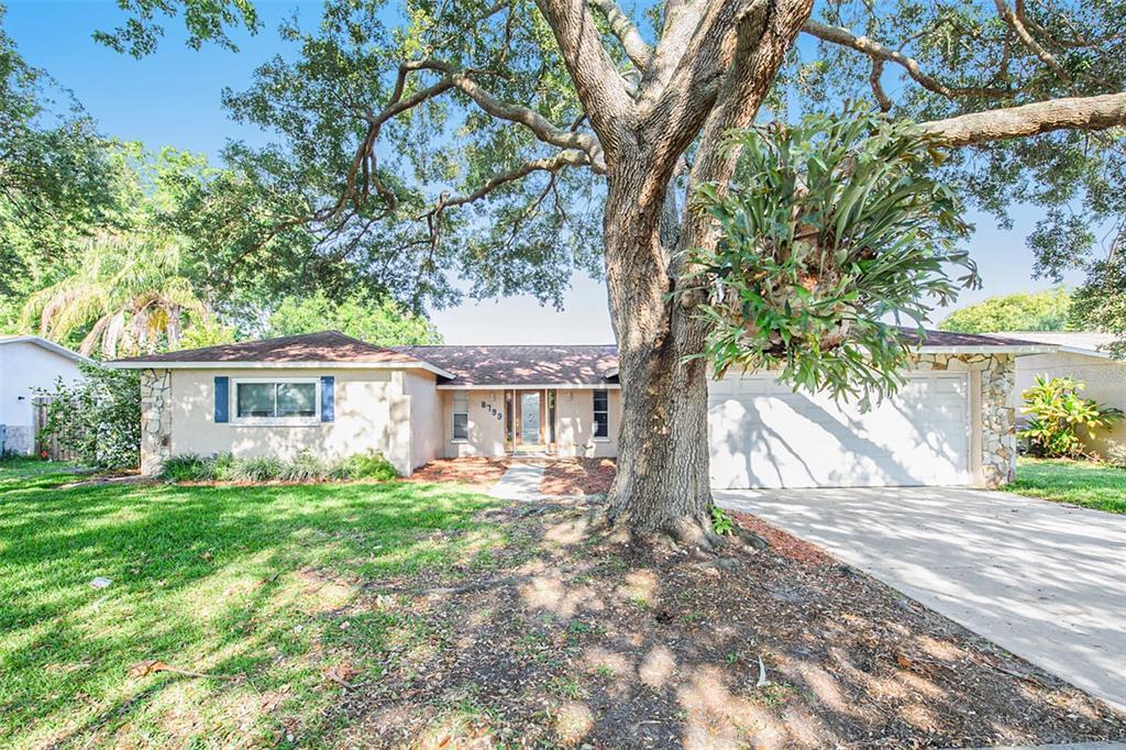 8799 Leona Street Property Photo