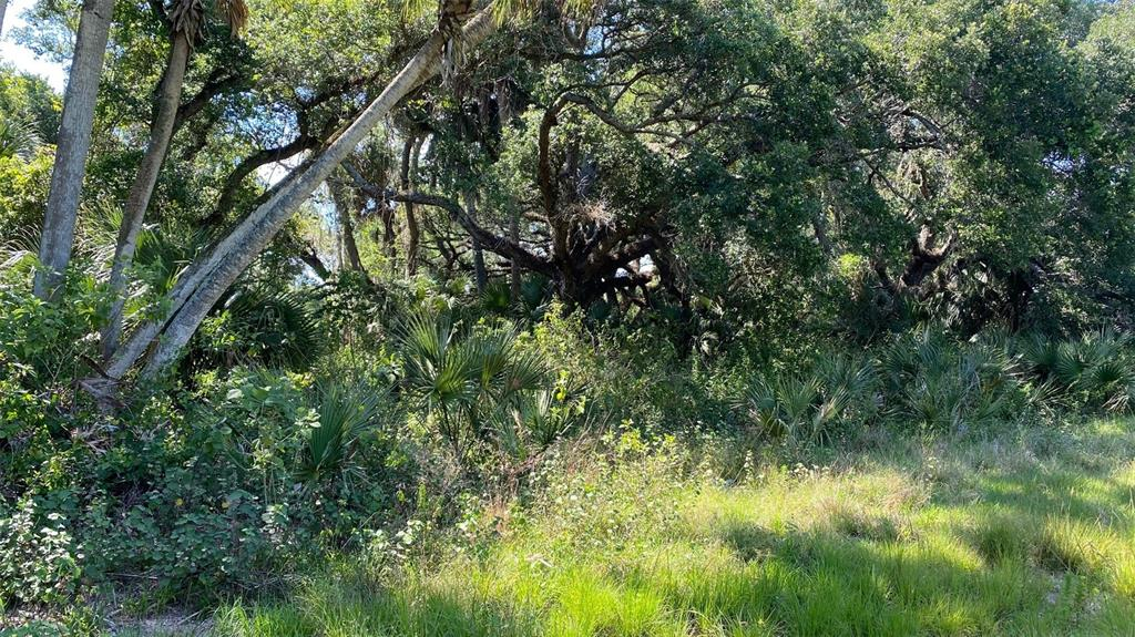 1029 Bankers Road Property Photo
