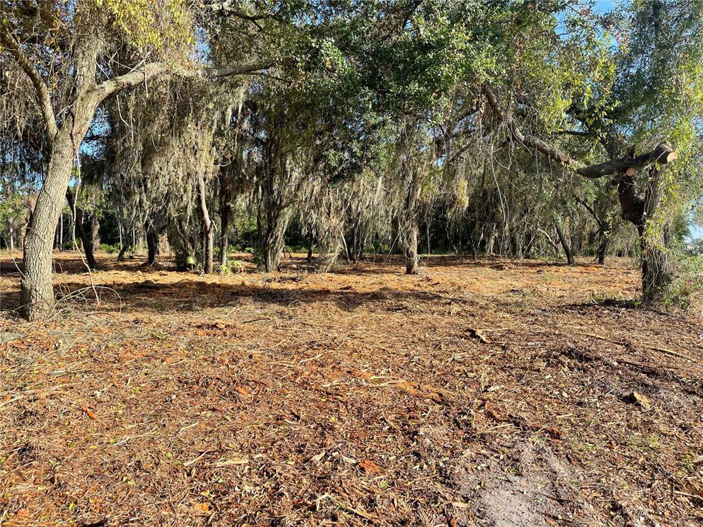 3524 Hickory Tree Road Property Photo