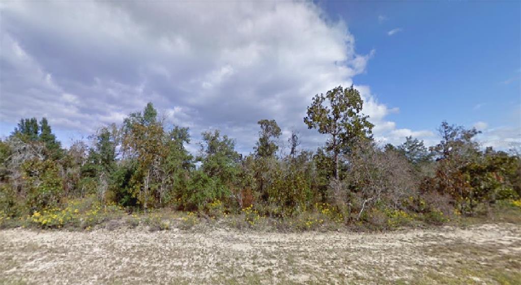Bonita Drive Property Photo