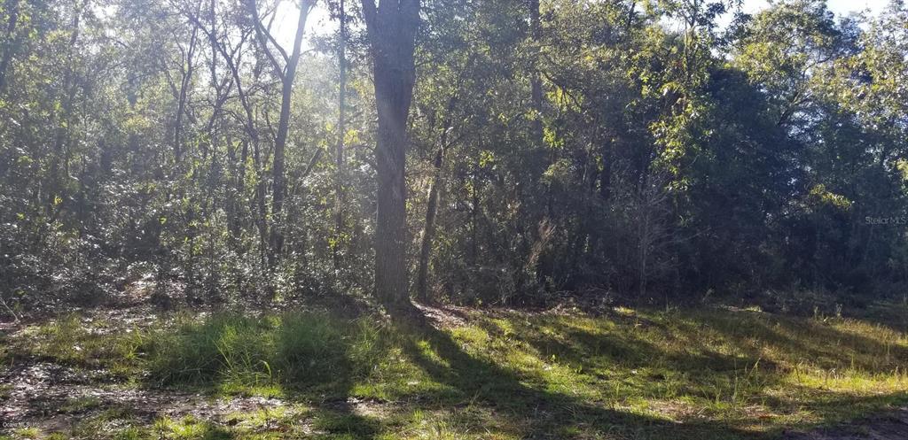 TBD NE 122 CT Property Photo