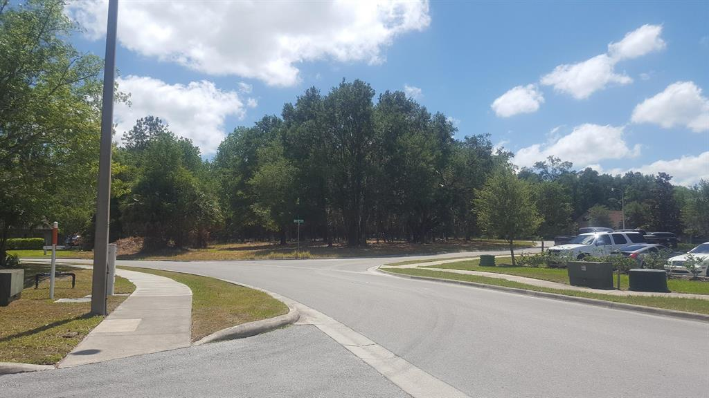 TBD SW 20th PLACE Property Photo - OCALA, FL real estate listing