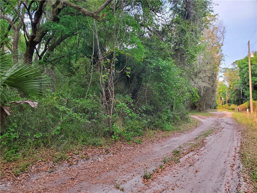 0 NE 150 LANE Property Photo - FORT MCCOY, FL real estate listing