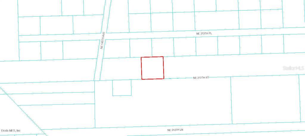 0 NE 213th STREET Property Photo - FORT MCCOY, FL real estate listing