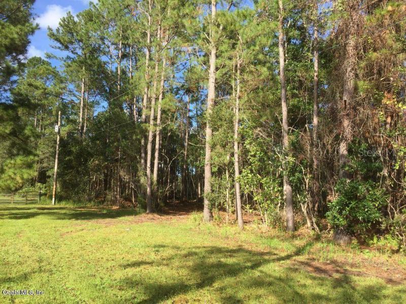 00 Dusty LANE Property Photo - PALATKA, FL real estate listing