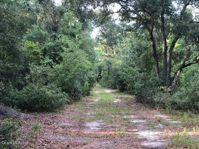 0 NE 212 St Rd Property Photo - FORT MCCOY, FL real estate listing