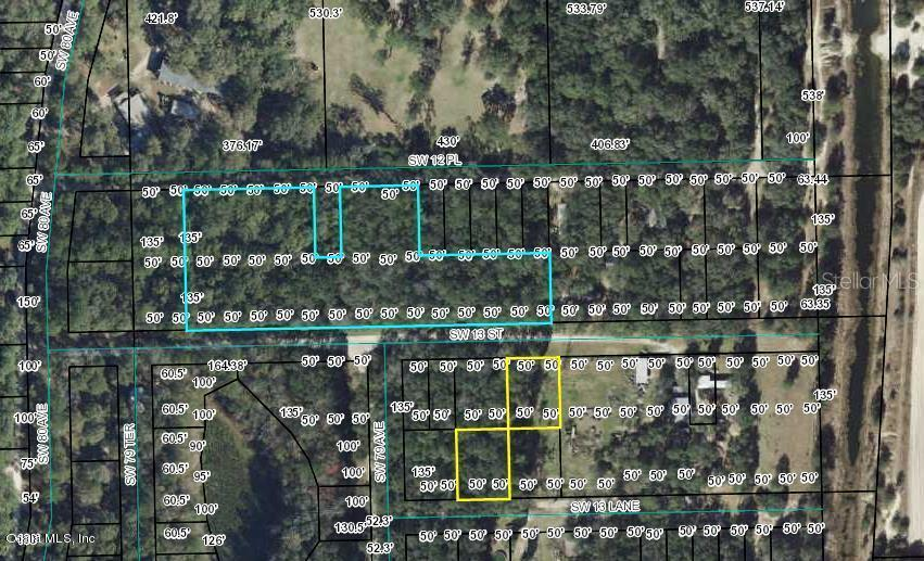 00 SW 12th PLACE #51,52 Property Photo - BELL, FL real estate listing
