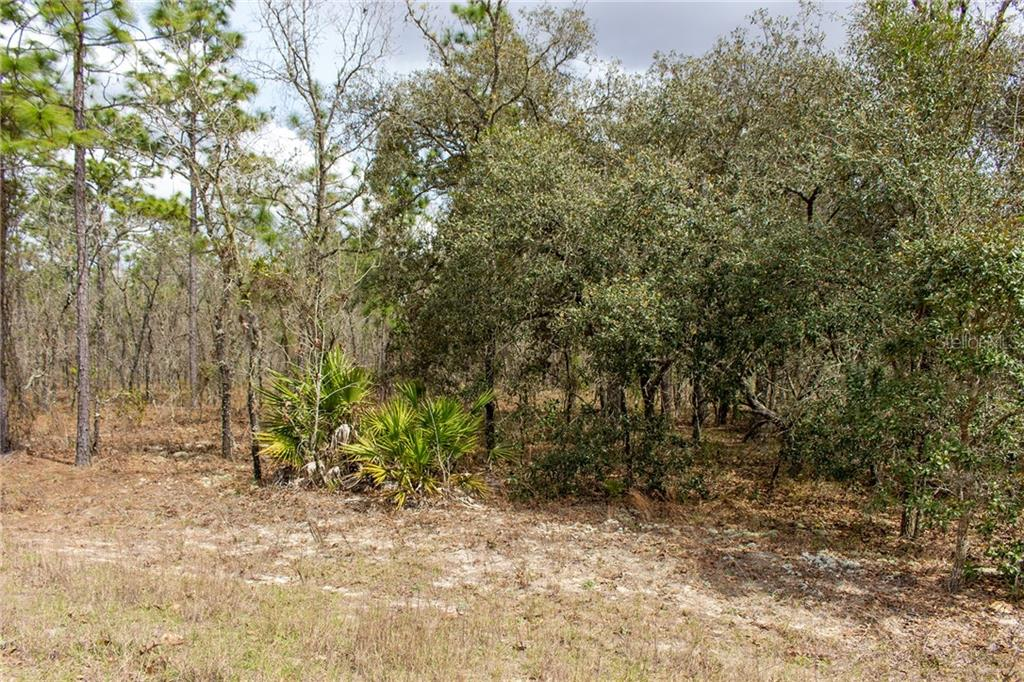 Lot 4 Sw 127th Avenue Property Photo
