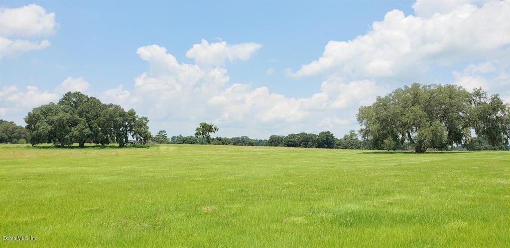 141ac NW Gainesville Rd (aka Hwy 25A) Property Photo - REDDICK, FL real estate listing