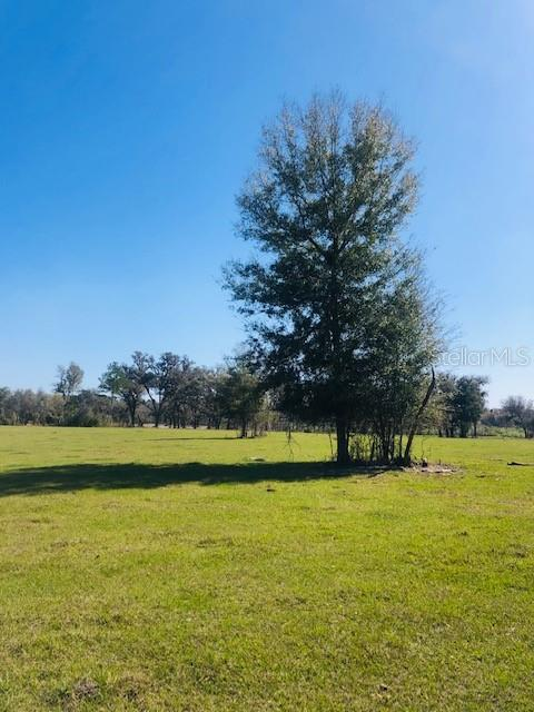 0 NW 145TH AVENUE, LOT 3 Property Photo - MORRISTON, FL real estate listing