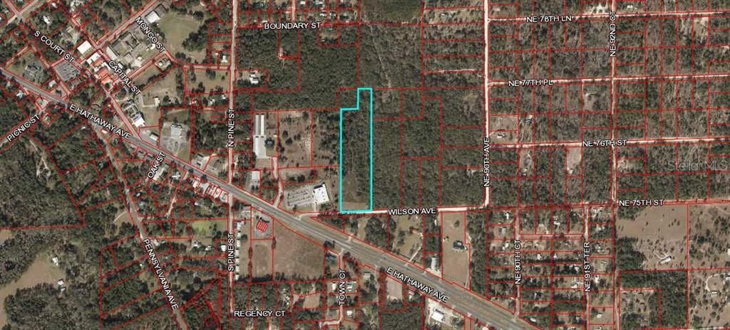 WILSON AVENUE Property Photo - BRONSON, FL real estate listing