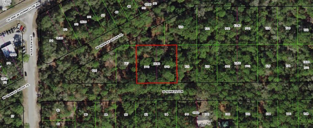 2923 W SUNKIST LANE Property Photo