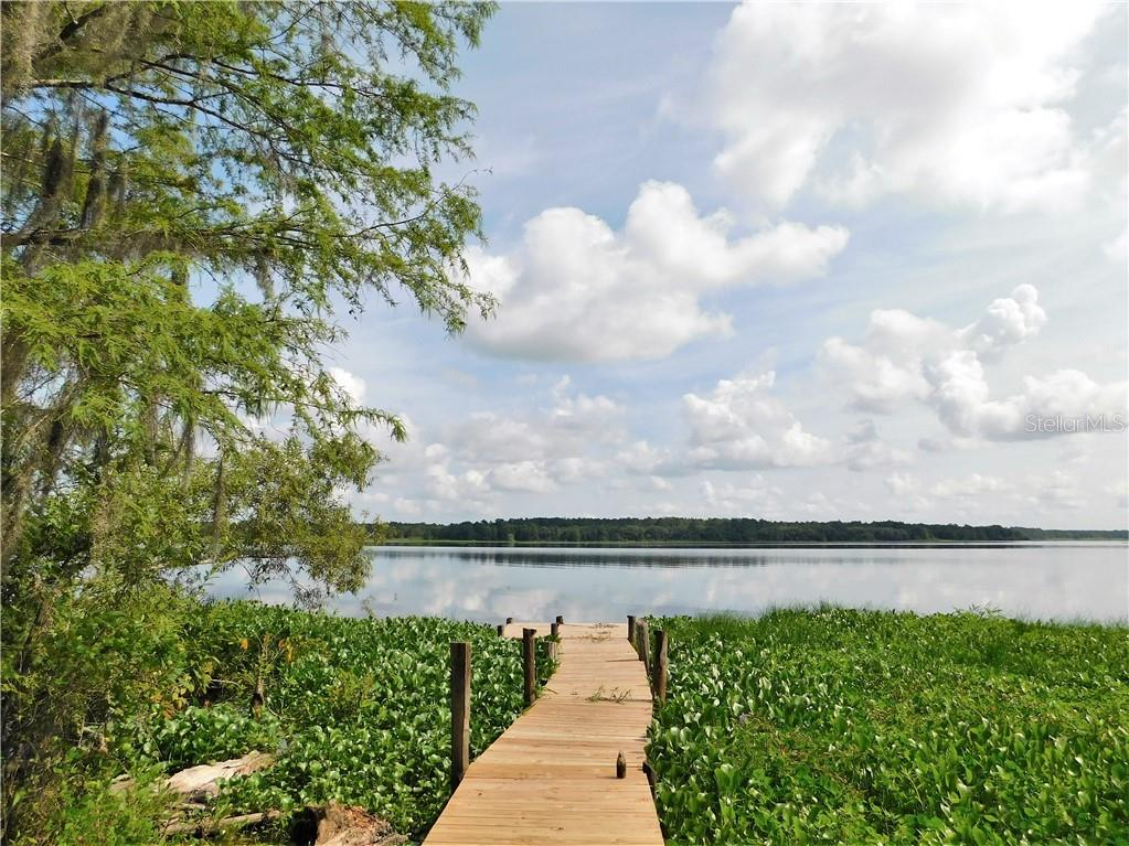 17275 NE 243 PLACE ROAD Property Photo - FORT MC COY, FL real estate listing