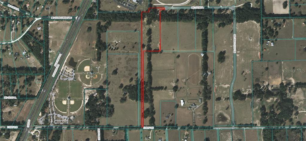 1150 NE 155TH PLACE Property Photo - CITRA, FL real estate listing