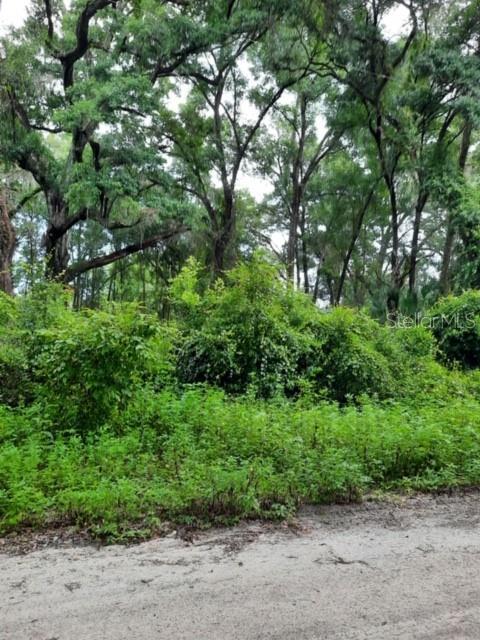 0 SE 147TH LANE Property Photo
