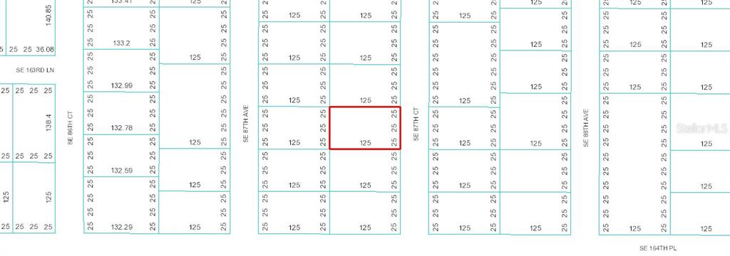 TBD SE 87TH COURT Property Photo - SUMMERFIELD, FL real estate listing