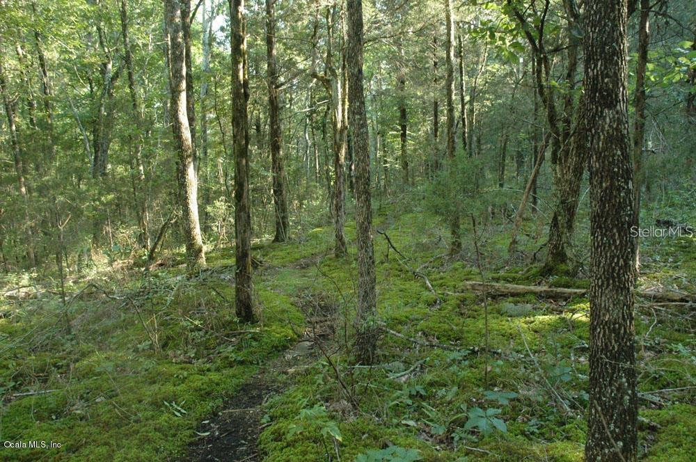 14071 SE 35TH COURT Property Photo