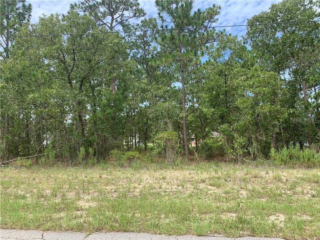 SW 76TH ST. Property Photo - OCALA, FL real estate listing
