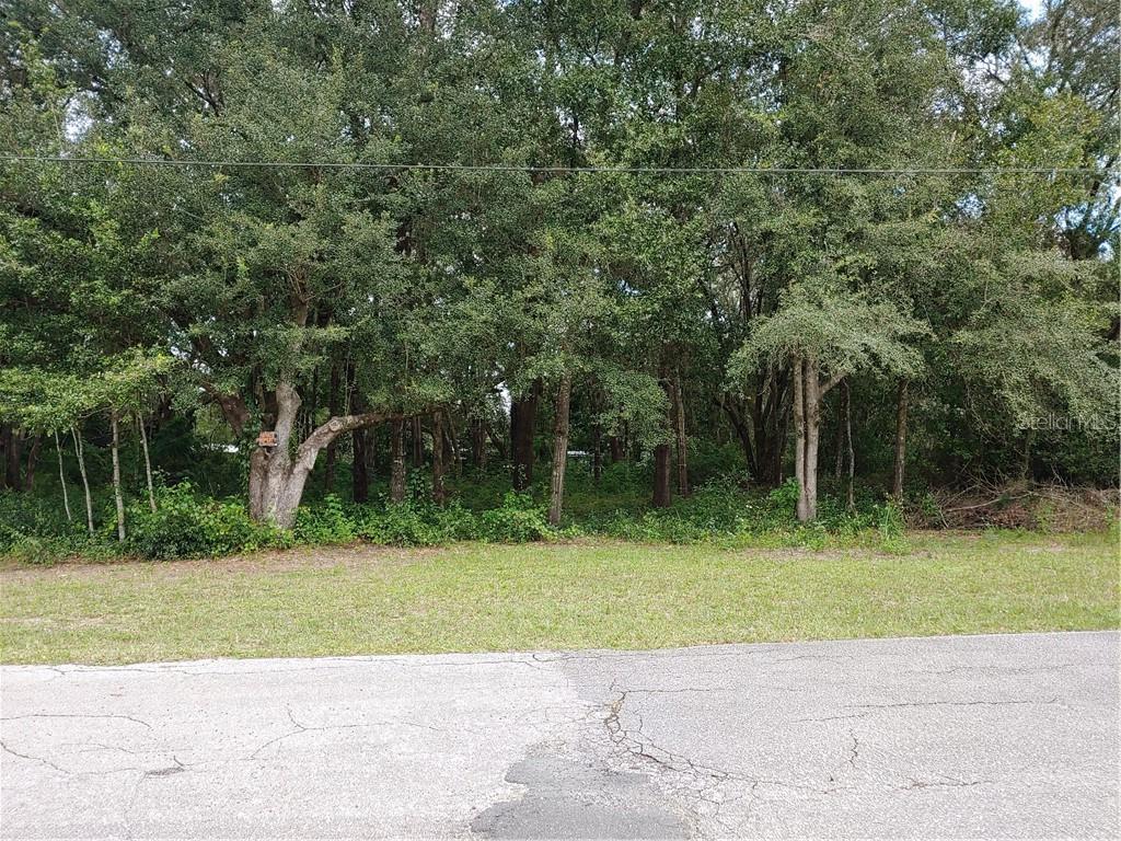 3418 W Cypress Drive Property Photo