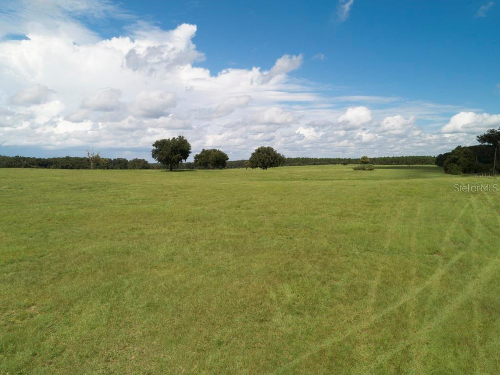 TBD SE 155TH STREET Property Photo - WEIRSDALE, FL real estate listing
