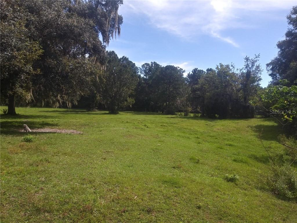 15215 NW HIGHWAY 329 Property Photo - REDDICK, FL real estate listing