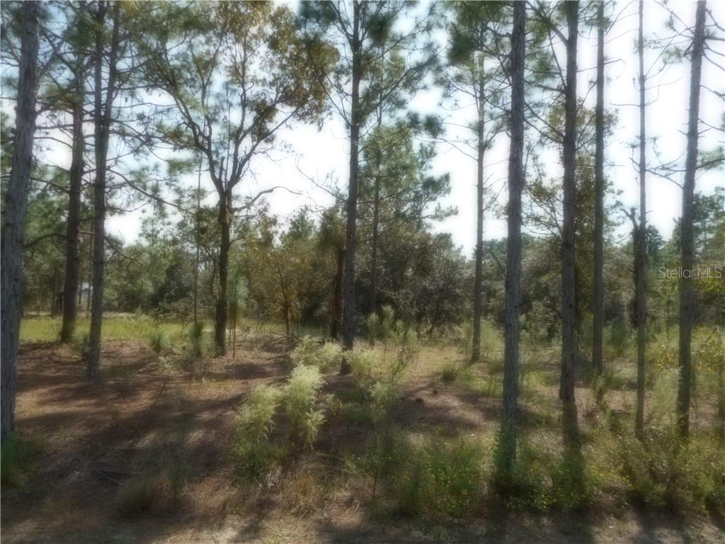 Lot 12 SURF BOULEVARD Property Photo
