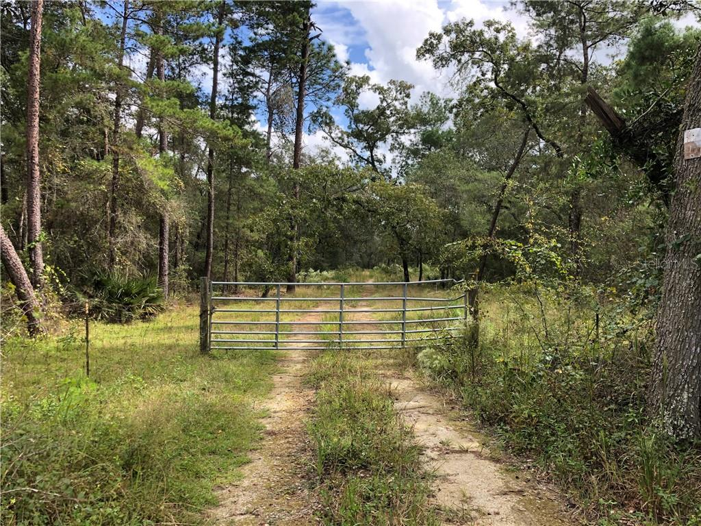 tbd COUNTY RD 314-A Property Photo - SILVER SPRINGS, FL real estate listing