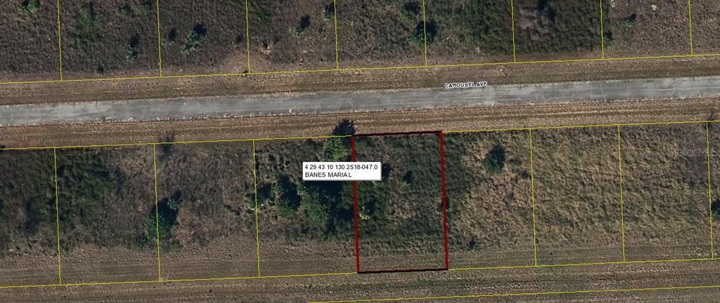111 CAROUSEL AVENUE Property Photo - LABELLE, FL real estate listing