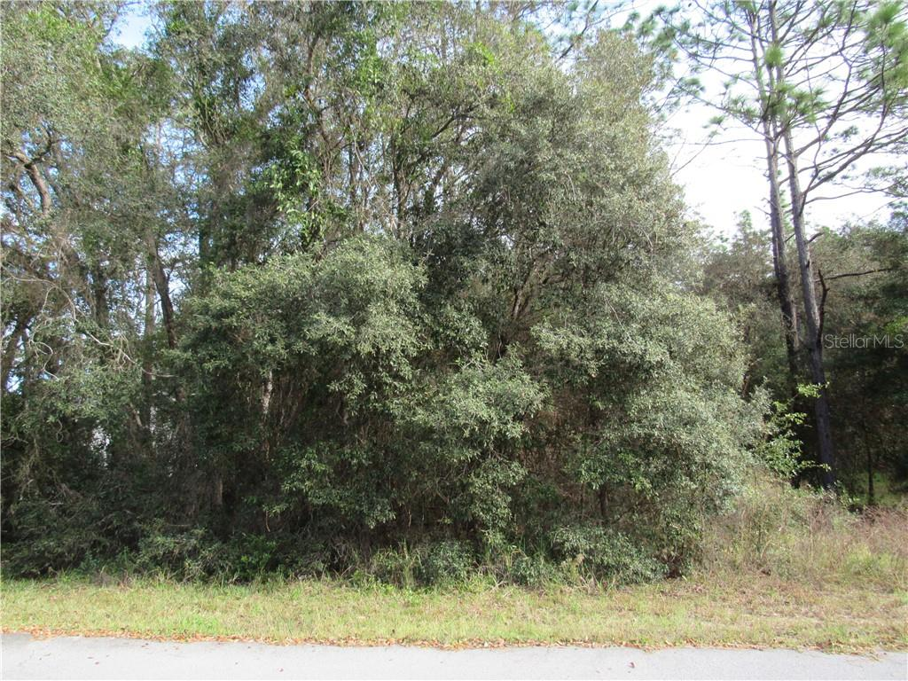 0000 Sw 98th Place Road, Dunnellon, Fl 34432 Property Photo