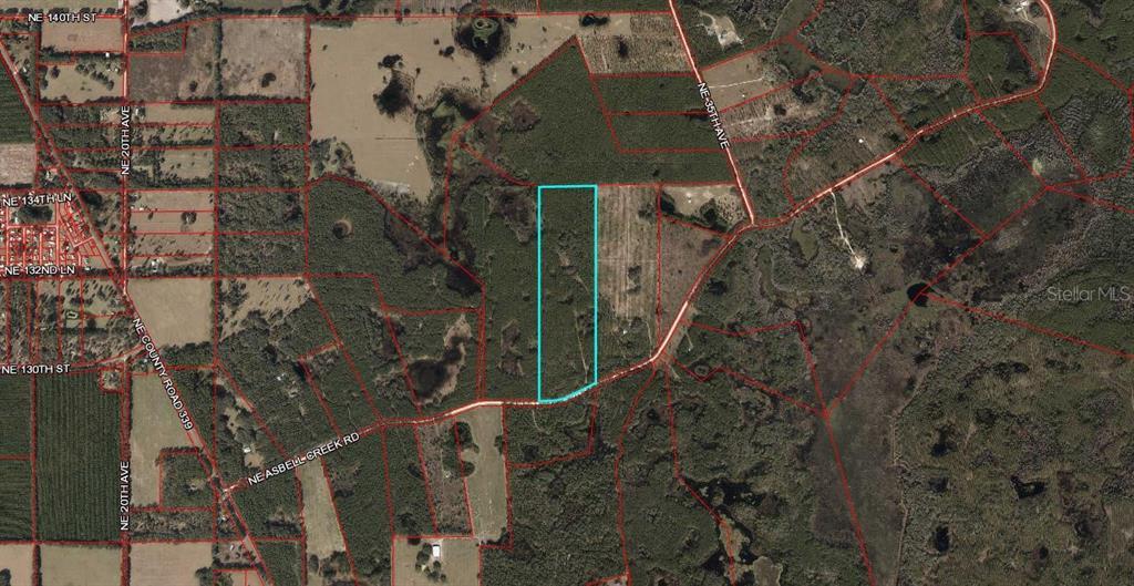 TBD NE ASBELL CREED RD Property Photo - TRENTON, FL real estate listing