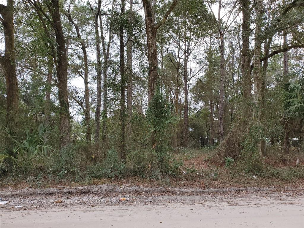 Lot 24 & 25 13 AVENUE Property Photo - CHIEFLAND, FL real estate listing